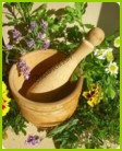 Надземная масса растений